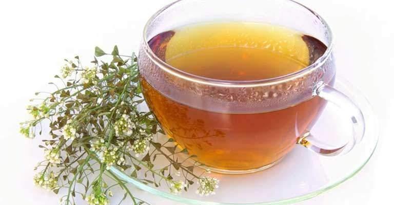 Civanperçemi Çayının Faydaları