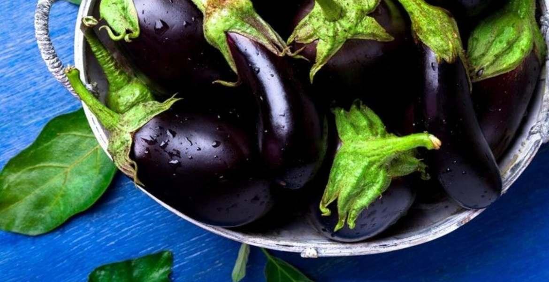 Patlıcan sapı suyu nasıl yapılır, kürü neye iyi gelir, faydaları nelerdir?